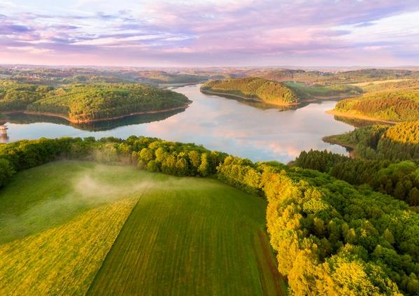 La France et ses forêts