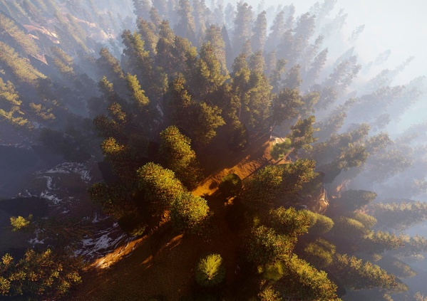 Le bois, un matériau naturel, renouvelable et bien plus encore