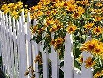 Choisir son portail et sa clôture : Pourquoi le bois ?
