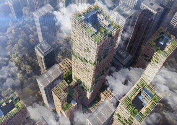 Un gratte-ciel en bois : rêve ou réalité ?