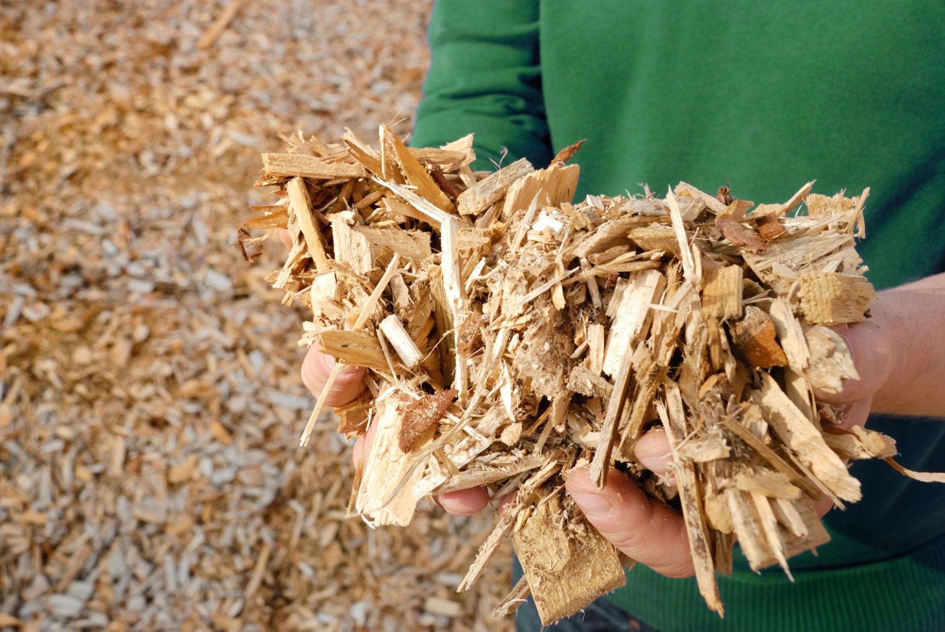 Les avantages environnementaux du bois