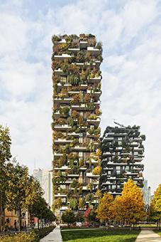 Exposition Forêts verticales et métropoles