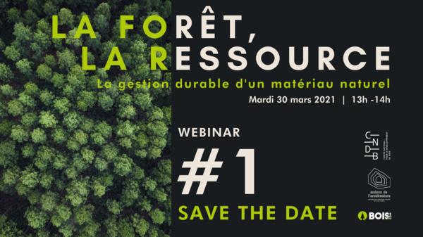 WEBINAR - La Forêt, la ressource :  la gestion durable d'un matériau naturel – 30 Mars de 13h à 14h