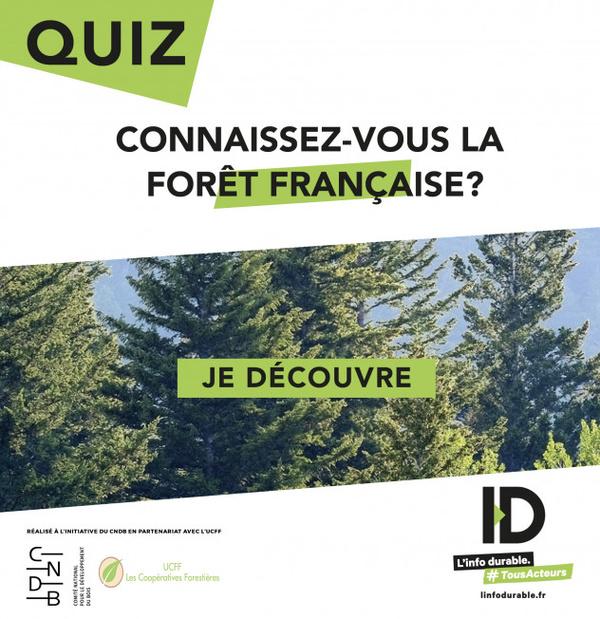 Le bois est plébiscité en tant que matière durable mais, pour autant, l'exploitation de nos forêts interroge. Il faut dire que les Français ont la passion des forêts, mais les connaissent-ils vraiment ? Pas si sûr.