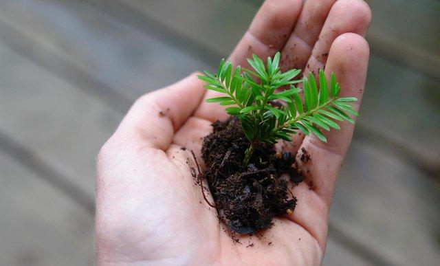 Les enjeux environnementaux et sociétaux