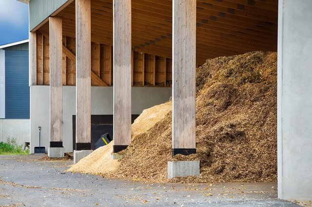 Énergie : la transition par le bois?
