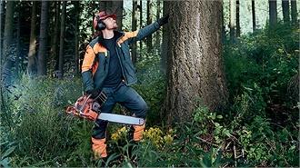 Mon métier : Aider la forêt à respirer