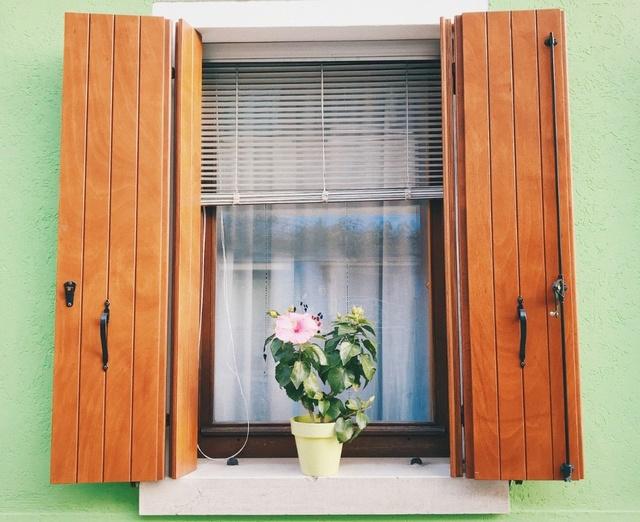 Volets : Pourquoi choisir le bois (avantages et solutions)