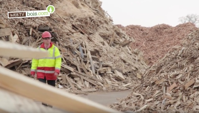 [Vidéo] Bois & recyclage