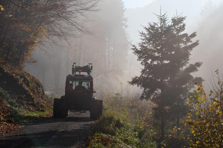 Exploitant forestier au travail