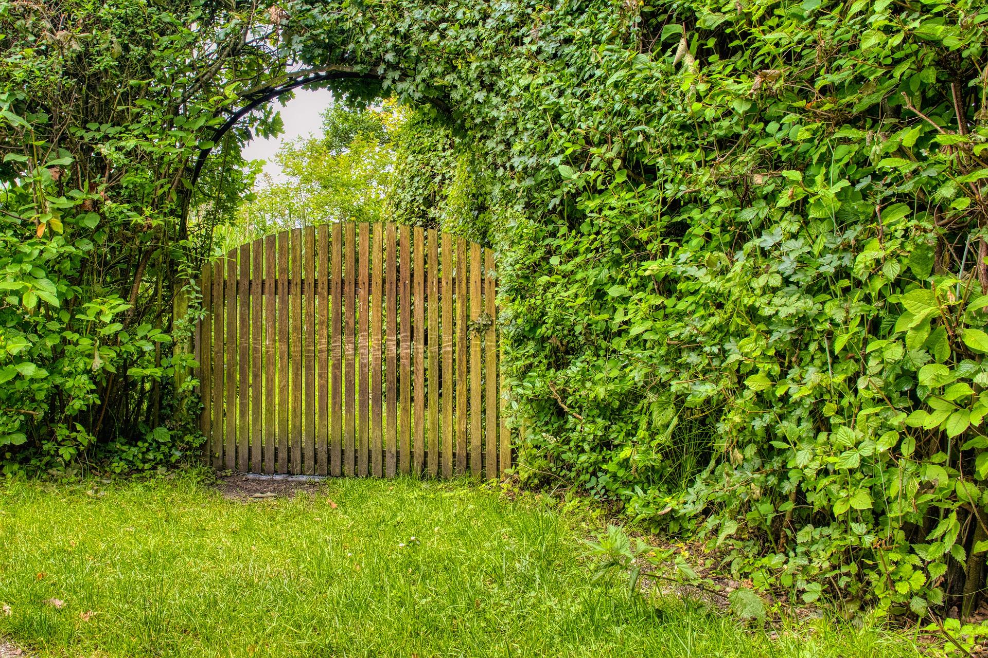 portail bois jardin